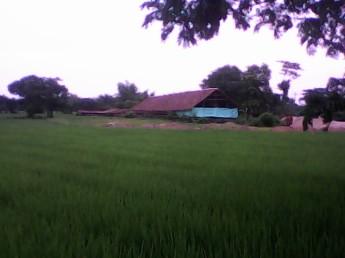 Pinal Banten
